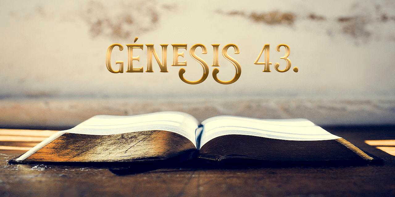 Génesis 43